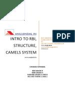 RBI_1.pdf