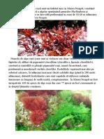 Algele roșii.docx