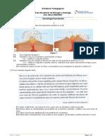 ficha trabalho sismologia e vulcanismo e correção 2021.docx