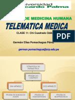 11 MEDICINA CHICUADRADA TELEMATICA 2020