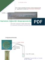 Systématique des procaryotes_La galerie API 20E