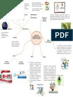 MAPA MENTAL CARACTERÍSTICAS DEL DERECHO ECONÓMICO
