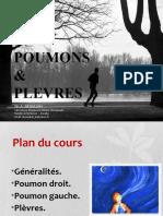 08- Poumons et plèvres