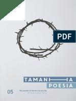 tamanhapoesia05danielfaria.pdf