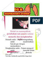lung's model