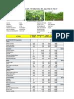 HUANCOY costo de produccion por hectarea del cultivo de palto