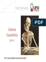 1. Sistema esqueletico BBPMI