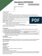 Sistema Reproductor (HISTOLOGIA) (Reydel Gonzalez)