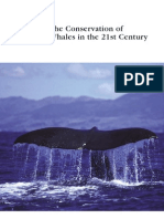 Conservation of Whales in the 21st Century