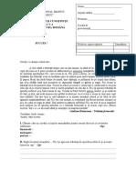 Model-subiecte-limba-si-literatura-romana-admitere-clasa-a-V-a-2020
