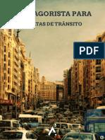 Guia Agorista para Multas de Transito - Agorismo.org