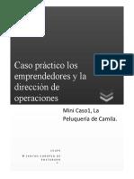 Mini Caso1, La Peluquería de Camila.