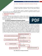 Alimentation énergétique module agronomie II.pdf