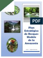 Plan Estratégico de Bosques Modelo de la amazonía