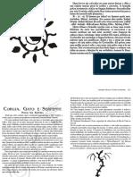 Caderno 8.pdf