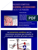 sensibilidad-somatica-3-1222790501483926-8