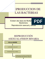 SUBTEMA 4 Y 5 REPRODUCCION Y GENETICA BACTERIANA