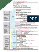 05a-ictère nn.pdf