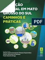 Educação-Especial-em-MS-Caminhos-e-Práticas.pdf