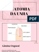 Anatomia+das+Unhas.pdf
