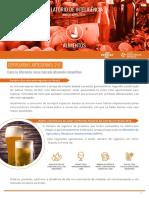 AlimentosRICervejasArtesanais2.0.pdf