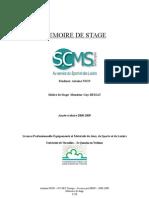 Memoire de licence - Scms Europe