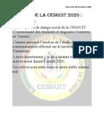 Bilan de la CESGUIT 2020 c (1).pdf