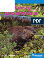 27_Busy_Beavers