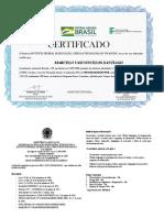 Certificado Programador Web - Novos Caminhos - IFTO - 200 Horas