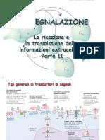 12-biosegnalazione_ii