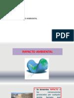 2.1.-  ESTUDIO DE IMPACTO AMBIENTAL