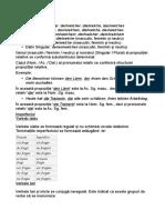 Pronume Relativ Exemple