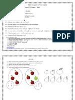 1530223615_1529906798_proiec de lectie matematica clasa pregatitoare RED