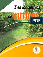 16. Podas en los Cultivos de Citricos.pdf