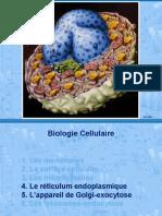 4-5_RE_Golgi_Exocytose