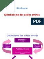 Métabolisme des acides aminés (Dr.Chikouche).pptx