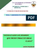 CHO'S ESTRUCTURALES-NUTRICIÓN DE RUMIANTES