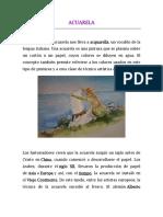 ACUARELA.pdf