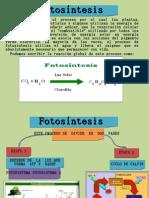 bioquimika