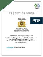Rapport de stage SAFAA