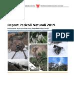 2019_Report_Pericoli_Naturali.pdf