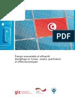 FR_EmploiEREE_GWS_122012_GIZ.pdf