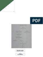 Apresentação-seminario-fluxograma