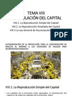 TEMA VIII ACUMULACIÓN DEL CAPITAL.pdf