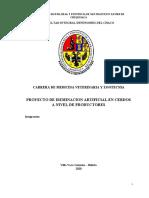 1608505155044_proyecto de inseminacion en cerdos.docx
