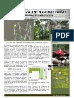 Articulo UMA Sede Regional VGF