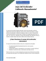Programar Cuerpo Del Acelerador CTA PDF Jag