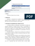 Relatório Final APS Anatomia