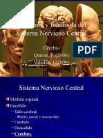 Cerebro[1]
