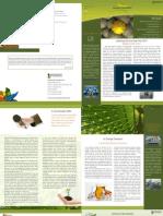 Amazan Newsletter Jan'11 Issue